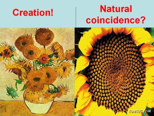 The Creation And Coincidence