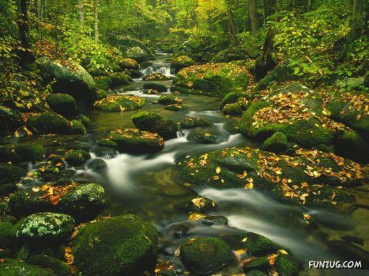 Beautiful Rivers Photography