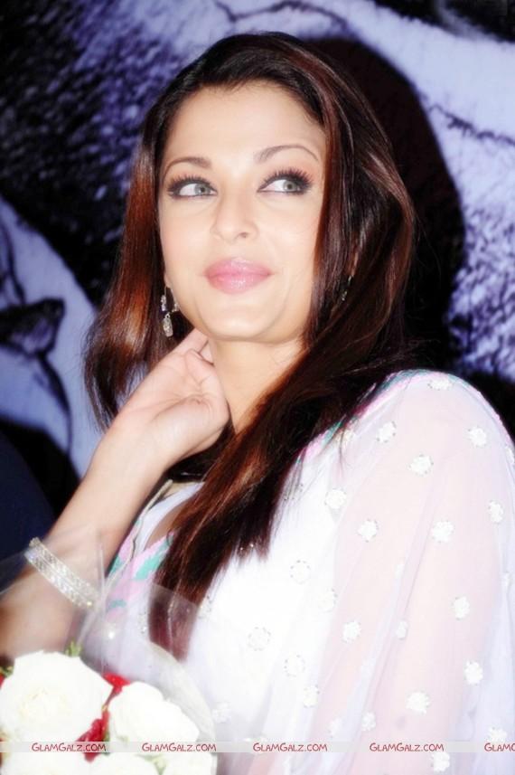 Aishwarya - Bonnet Brushed