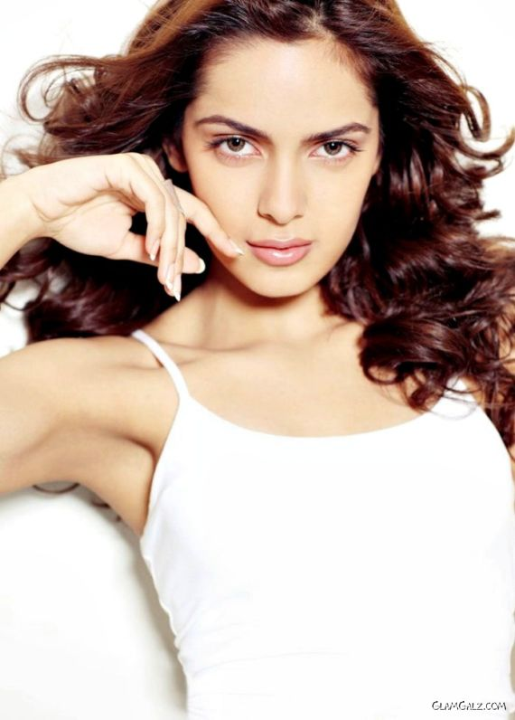Beautiful Shazahn Padamsee Photoshoot