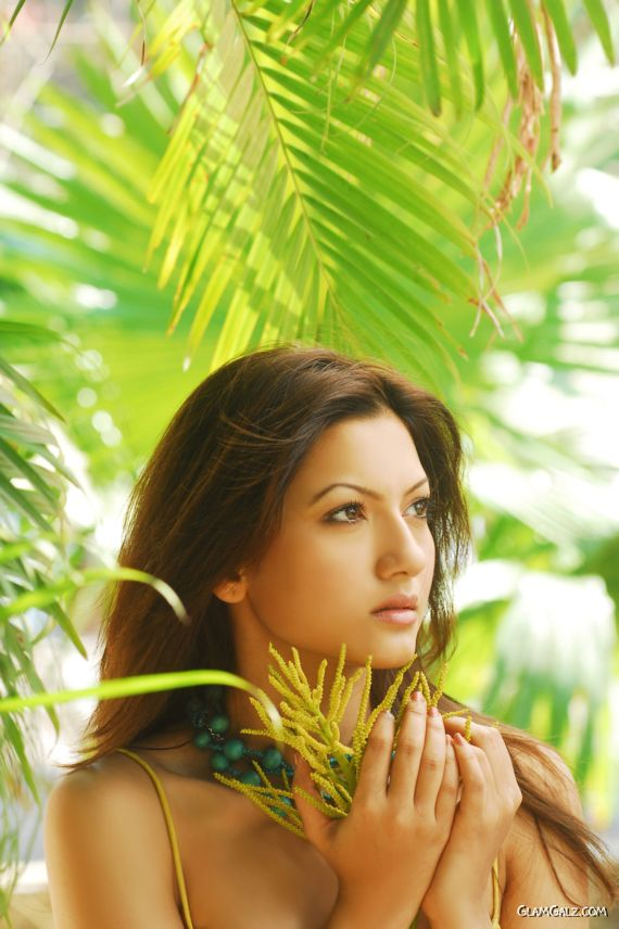 Gorgeous Gauhar Khan Photoshoot